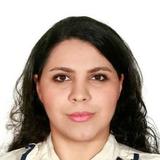 Maryam Moghimi