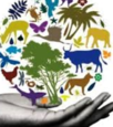 Icon for Biodiversity and Conservation