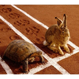 Icon for Exponential Functions and The Tortoise and the Hare